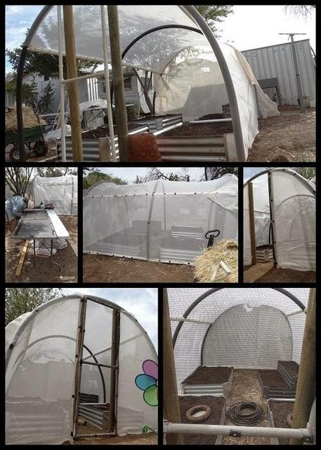 January Week 1...Shadehouse.
