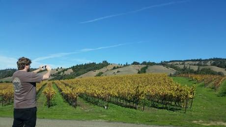 Anderson-Valley-Wine-Region