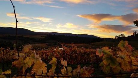 Mendocino-Sunset