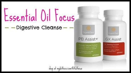Essential Oil Focus Digestive Cleanse via Fitful Focus #essentialoils #digestive #cleanse #doterra