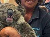 Wildlife Fire Australia Shrinking Polar