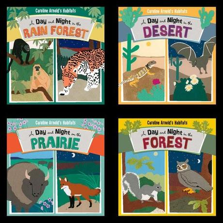 CAROLINE ARNOLD'S HABITATS: A Day and Night in the Rain Forest, Desert, Prairie and Forest--New Series Written and Illustrated by Caroline Arnold