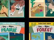CAROLINE ARNOLD'S HABITATS: Night Rain Forest, Desert, Prairie Forest--New Series Written Illustrated Caroline Arnold