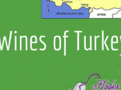 Podcast: Wines Turkey