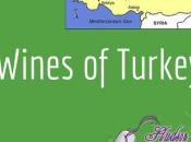 Podcast: Wines Turkey