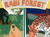 BOOK: NIGHT RAIN FOREST, Written Illustrated Caroline Arnold