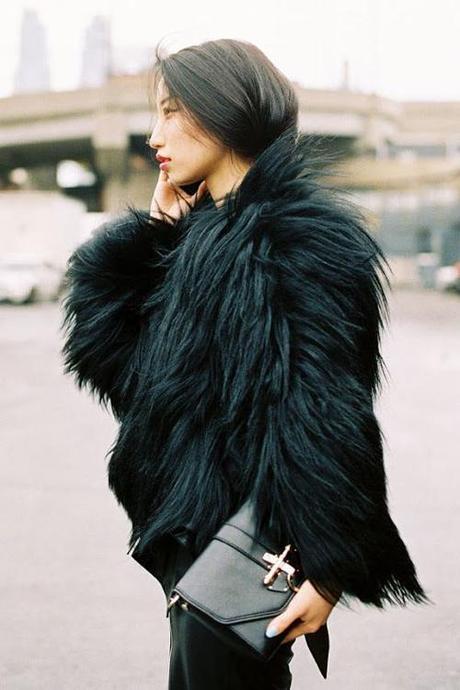 fur-long-black-asian