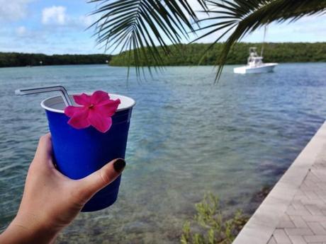 Florida-Keys-2015-Vacation-Ocean-Beach-Bay-Tropical-Islamorada-1