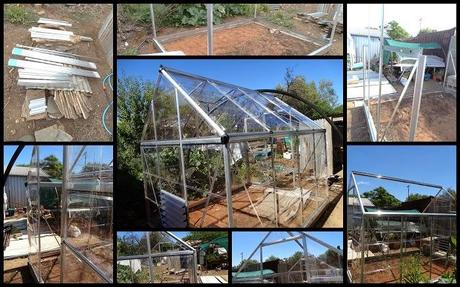 End of January...Greenhouse.