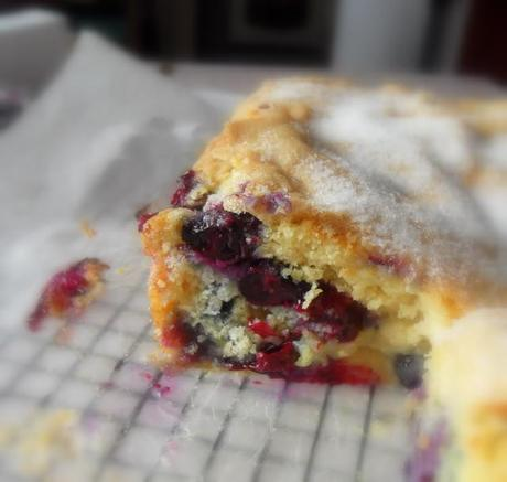 Blue Ribbon Blueberry Cake