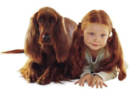kids & dogs1