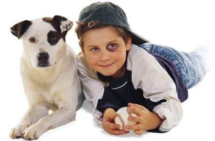 kids & dogs3