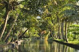 How to Reach Alleppey