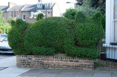 Topiary cat created by Tim Bushe