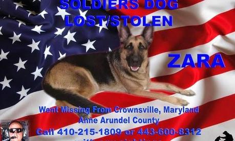 UPDATE: Army National Guard's missing dog suspected to be in South Carolina