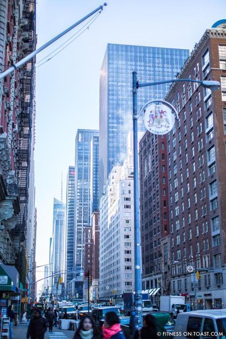 Fitness On Toast Faya Blog Girl New York USA Adidas Ultra Boost Launch Central Park-7