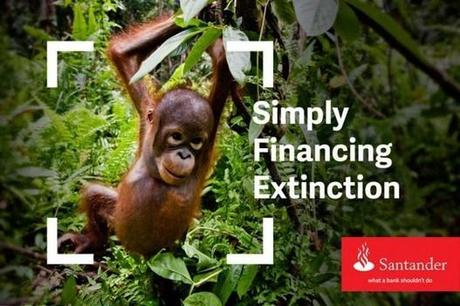Santander: simply financing extinction – Greenpeace UK (blog)