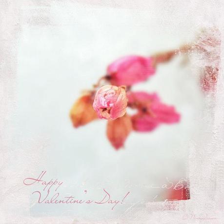 Heather Flovery Valentine's Day