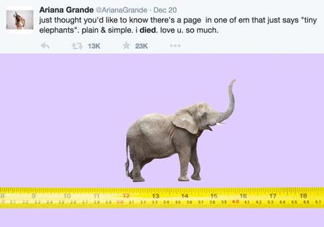 ariana-tinyelephants