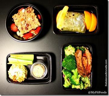 My Fit Foods Healthy Meals One Day