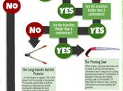 Pick Right Gardening Tool (Infographic)
