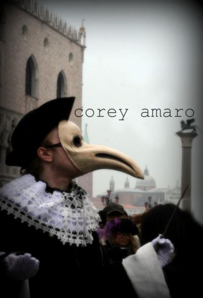 Venice carnival mask ball, Venice carnival corey amaro photography
