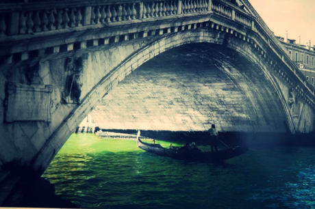 Venice corey amaro photography