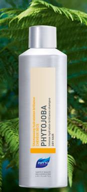 phyto shampoo