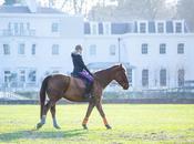 Benefits Horse Riding