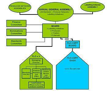 FLO Organizational Structure