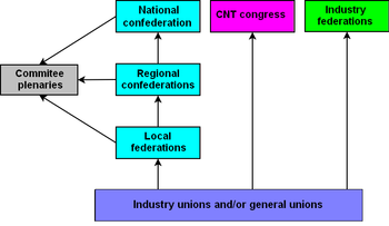 organization structure of the CNT