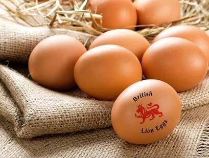 photo British-lion-Eggs_zpsk20fvohi.jpg