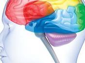 Health News: Blood Type Brain