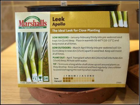 Sowing Leeks