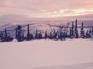 YAU 2015 gary rusnak 300x225 Yukon Arctic Ultra 2015   Results