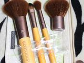 Tools Piece Mineral Brush [Review]