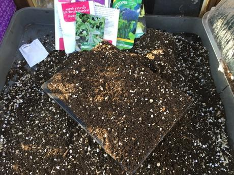 Sifted potting compost with added vermiculite
