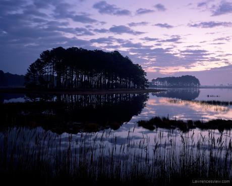 Chincoteague Sunrise © 2006 William Lawrence