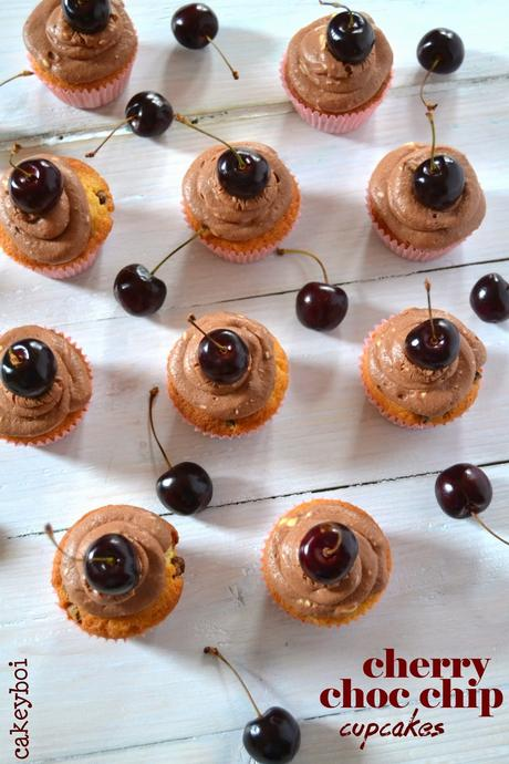 cherry choc chip cupcakes