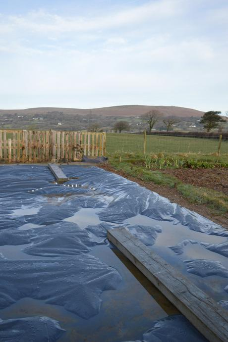A Simple Plan for Our New Allotment Plot – Part 1