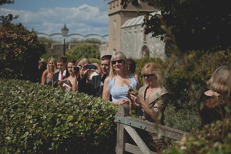 portland castle wedding photographers