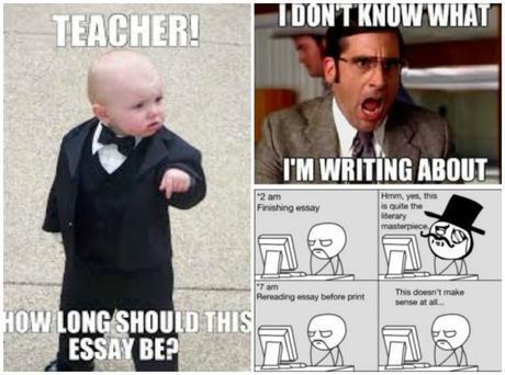 Essay Memes