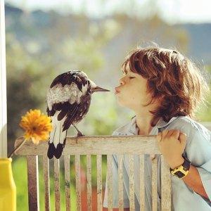 MAGPIE KISS