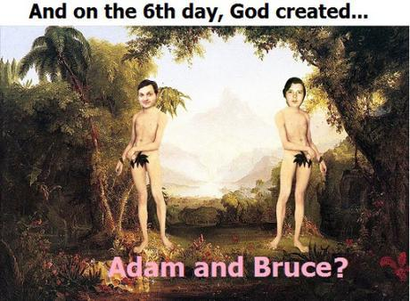 God created Adam & Steve