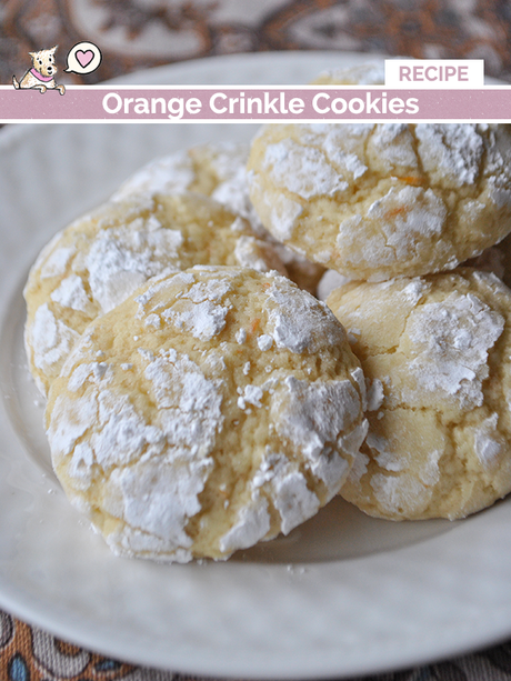 orange crinkle cookies recipe