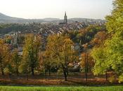 City Break: Stay Bern, Travel Free