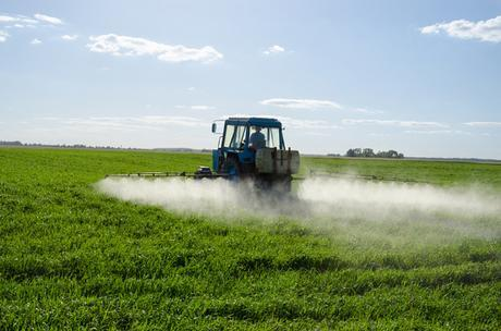 Monsanto Demands World Health Organization Retract Report That Says Roundup Is Linked to Cancer » EcoWatch