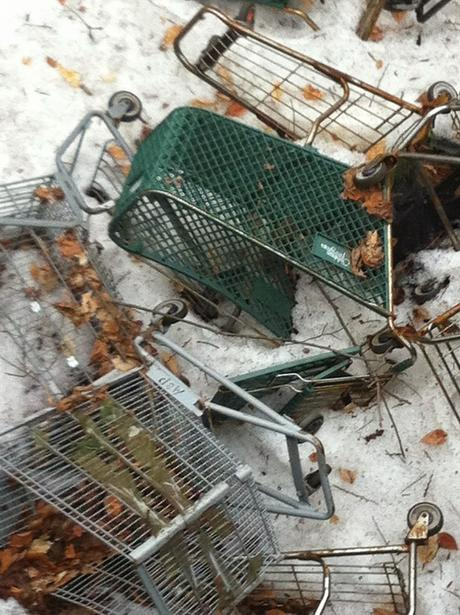 The Great Shopping Cart Massacre
