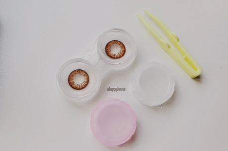 [Klenspop] Lenspop Bunny Color Brown Circle Lens Review