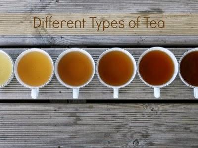 9 Different Tea Types